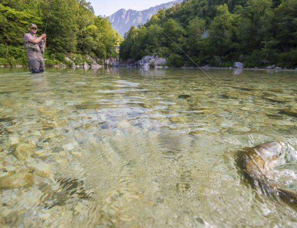 flyfish-soca-slovenia